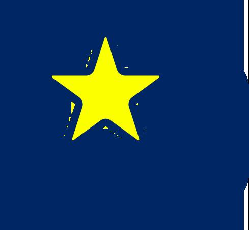 review-icon-sva